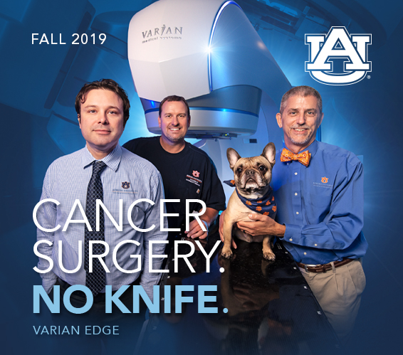 Cover for Fall 2019 Edition