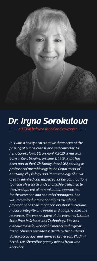 Dr. Iryna Sorokulova Memorial